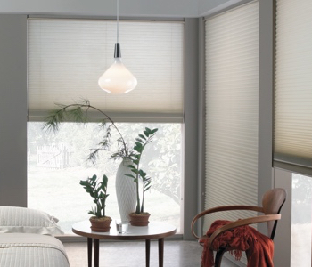 cellular shades in Las Vegas space